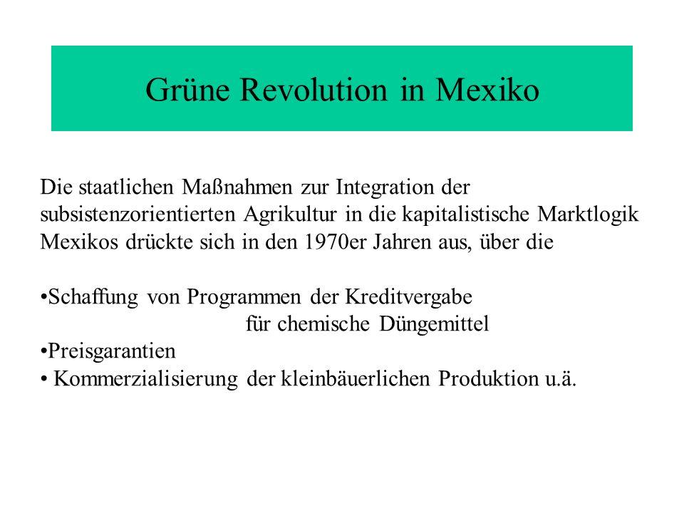 Grüne Revolution in Mexiko
