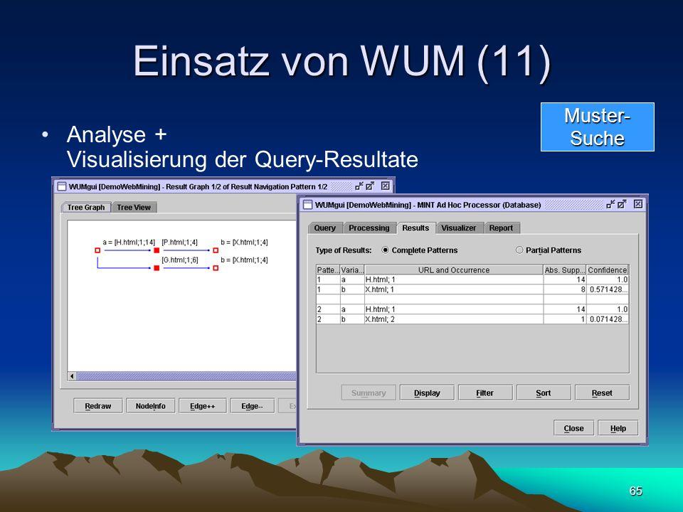 Einsatz von WUM (11) Analyse + Visualisierung der Query-Resultate