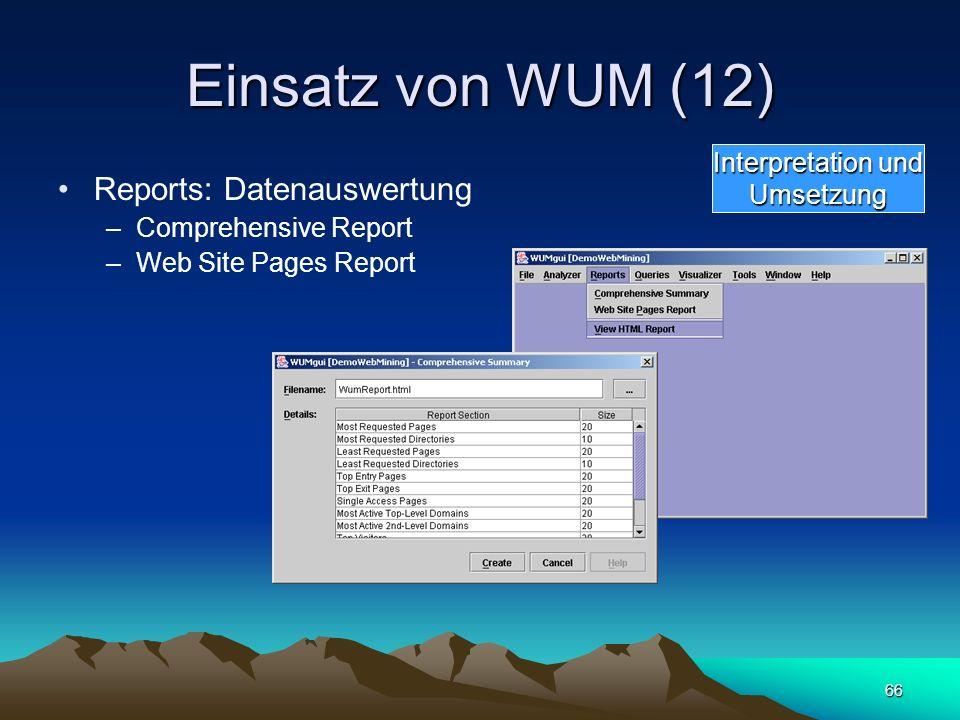 Einsatz von WUM (12) Reports: Datenauswertung Interpretation und