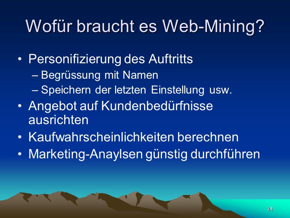 Wofür braucht es Web-Mining