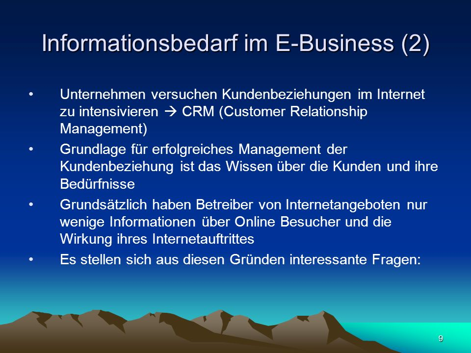 Informationsbedarf im E-Business (2)