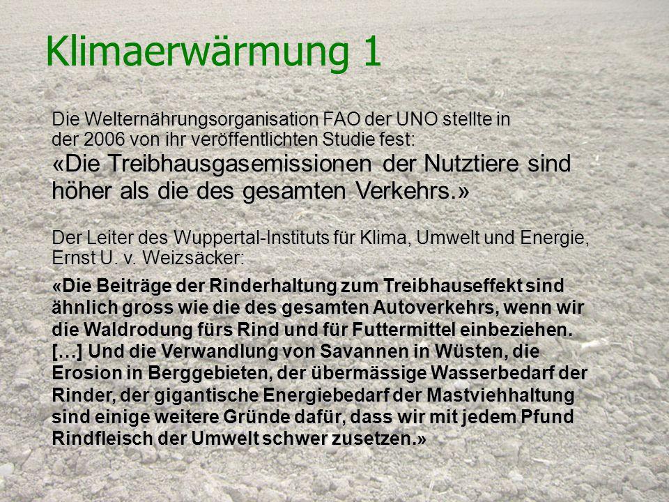 Klimaerwärmung 1 Die Welternährungsorganisation FAO der UNO stellte in. der 2006 von ihr veröffentlichten Studie fest: