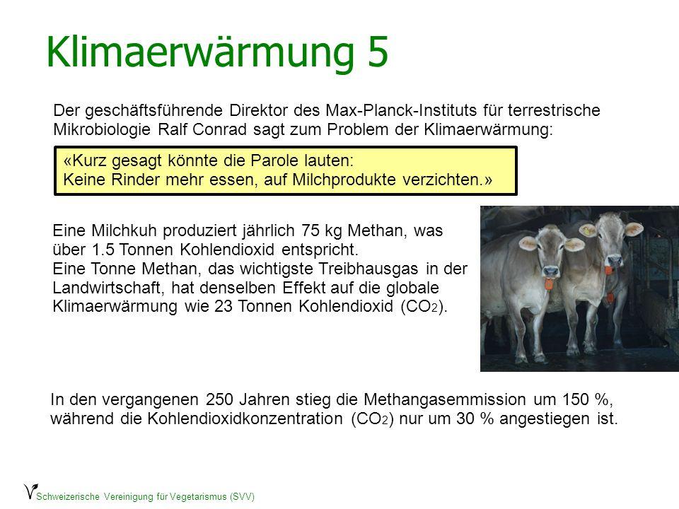 Klimaerwärmung 5