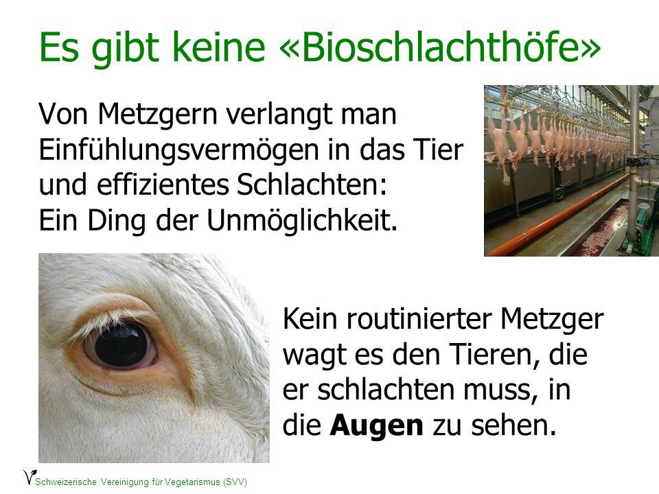 Es gibt keine «Bioschlachthöfe»