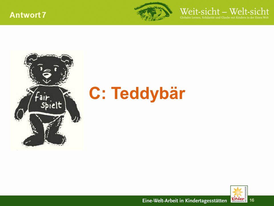 Antwort 7 C: Teddybär