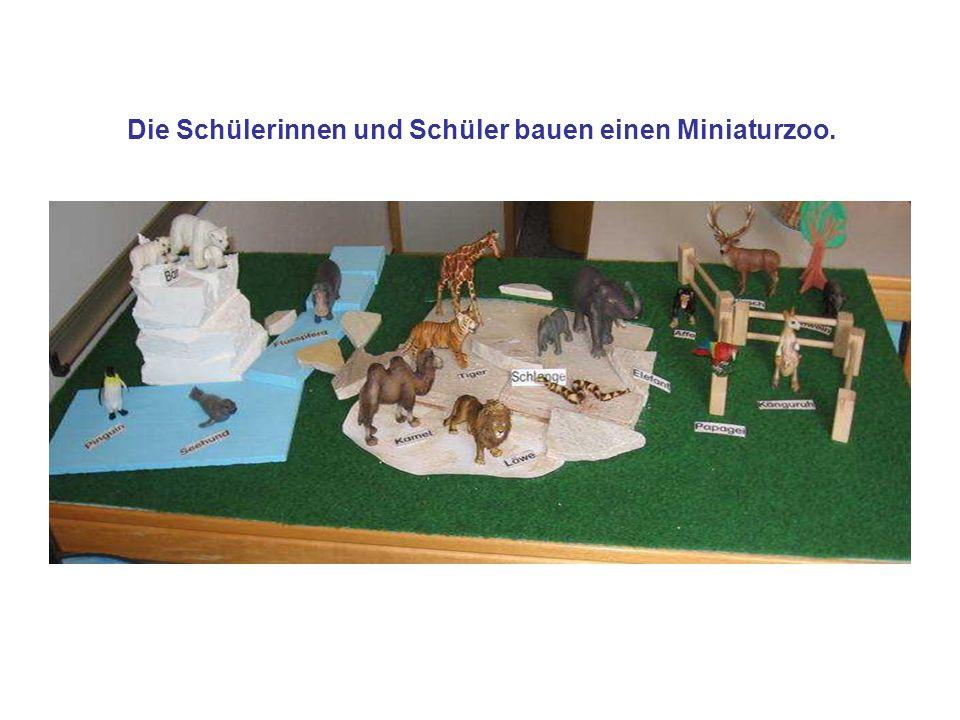 Die Schülerinnen und Schüler bauen einen Miniaturzoo.