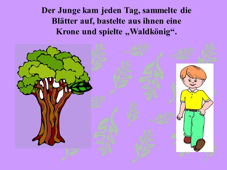 """Der Junge kam jeden Tag, sammelte die Blätter auf, bastelte aus ihnen eine Krone und spielte """"Waldkönig ."""