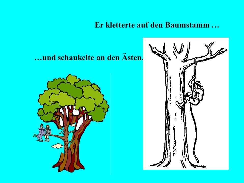 Er kletterte auf den Baumstamm …