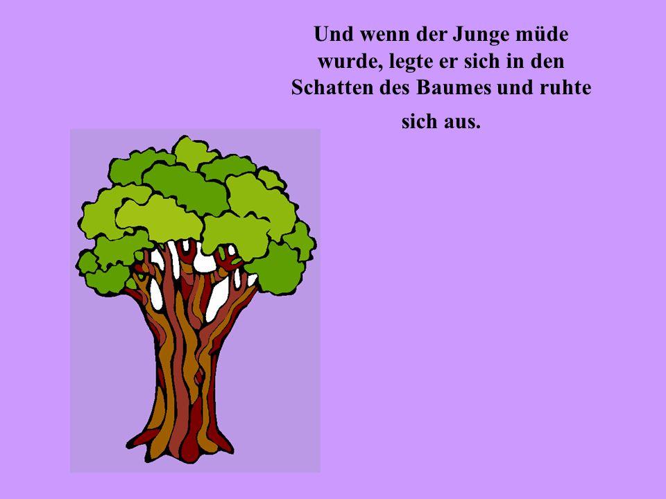 Und wenn der Junge müde wurde, legte er sich in den Schatten des Baumes und ruhte sich aus.
