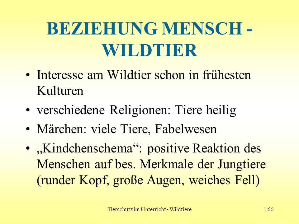 BEZIEHUNG MENSCH - WILDTIER