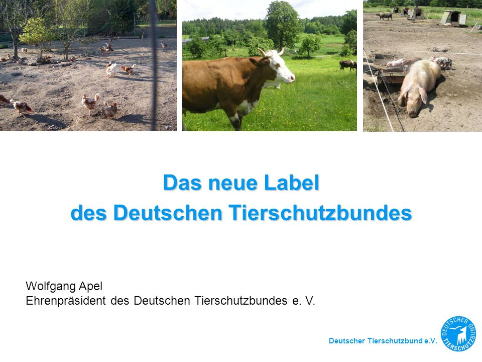 des Deutschen Tierschutzbundes