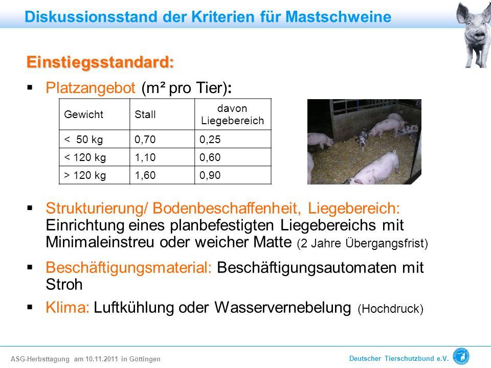 Einstiegsstandard: Diskussionsstand der Kriterien für Mastschweine