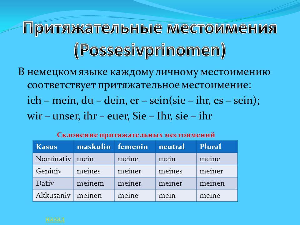 Притяжательные местоимения (Possesivprinomen)