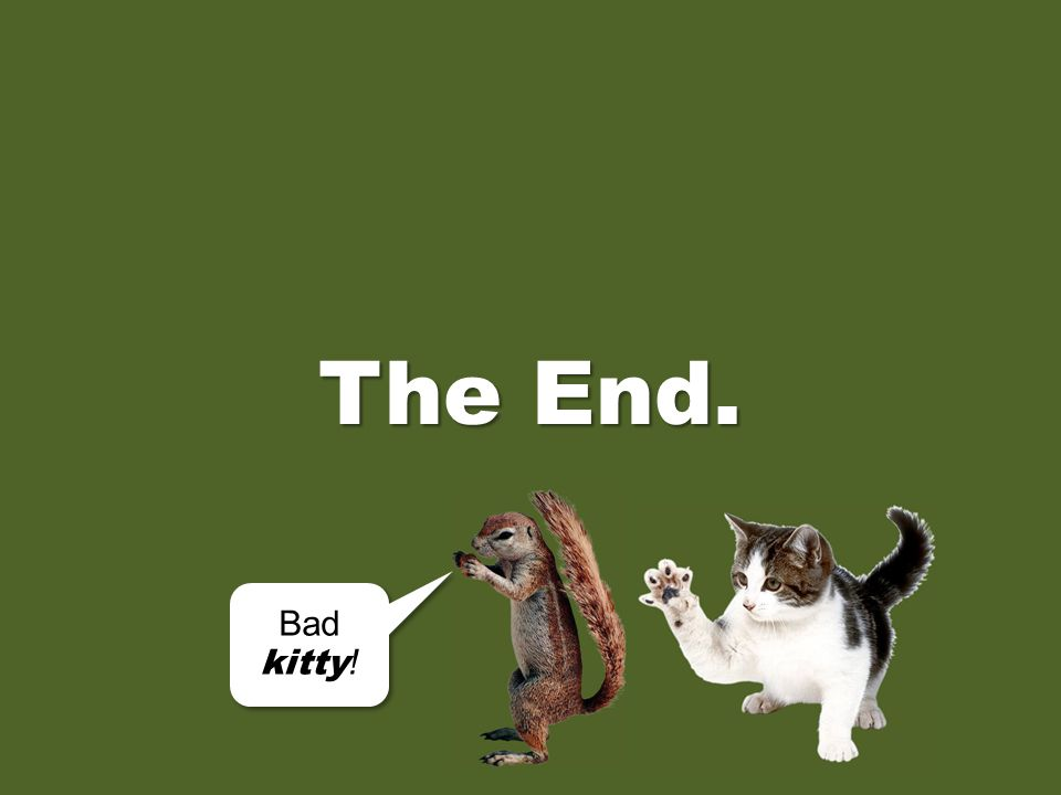 The End. Bad kitty!