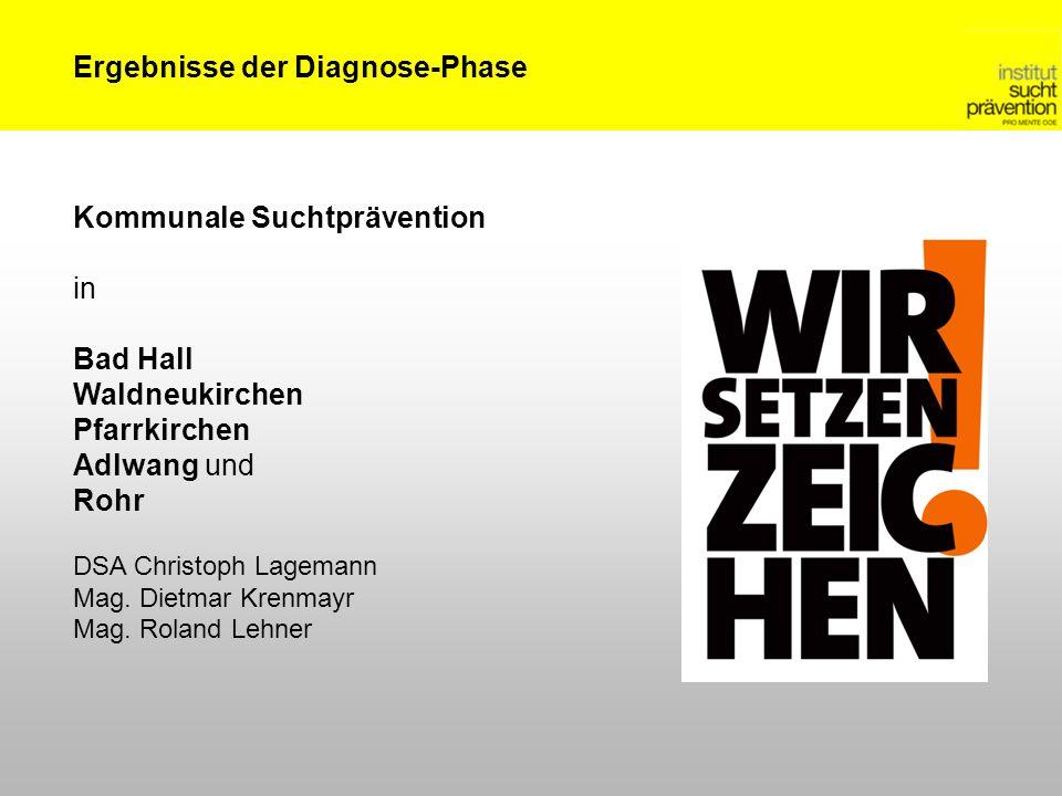 Ergebnisse der Diagnose-Phase