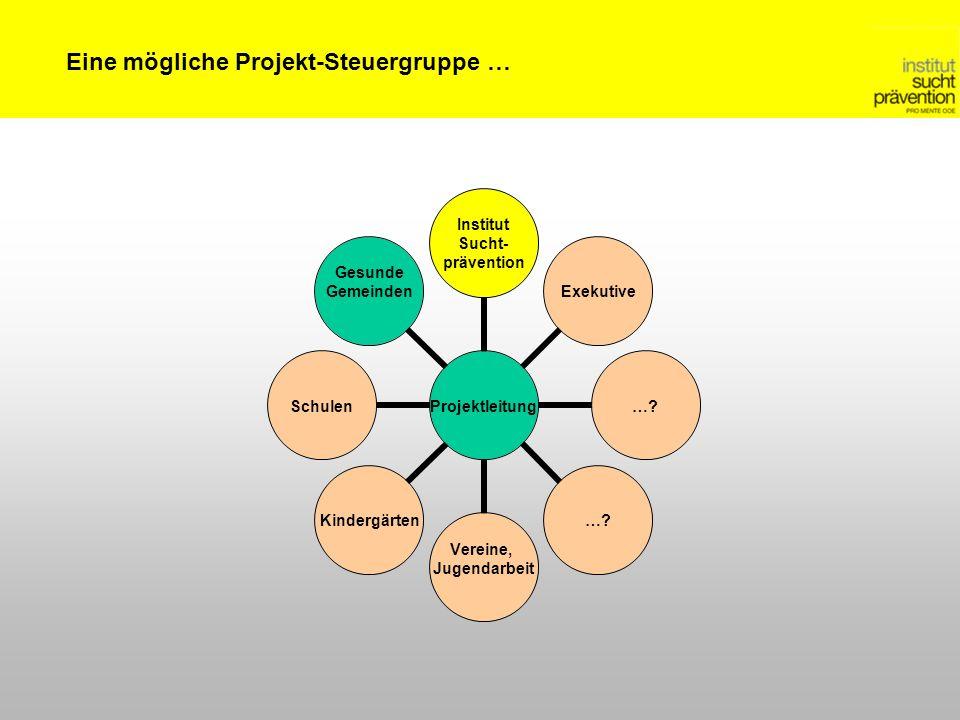 Eine mögliche Projekt-Steuergruppe …