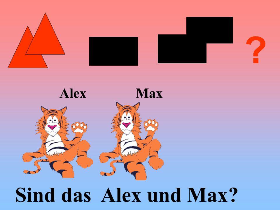 Alex Max Sind das Alex und Max