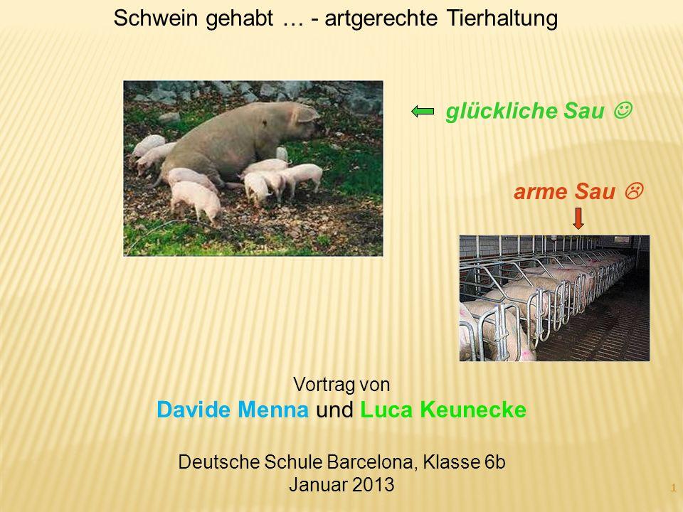 Schwein gehabt … - artgerechte Tierhaltung