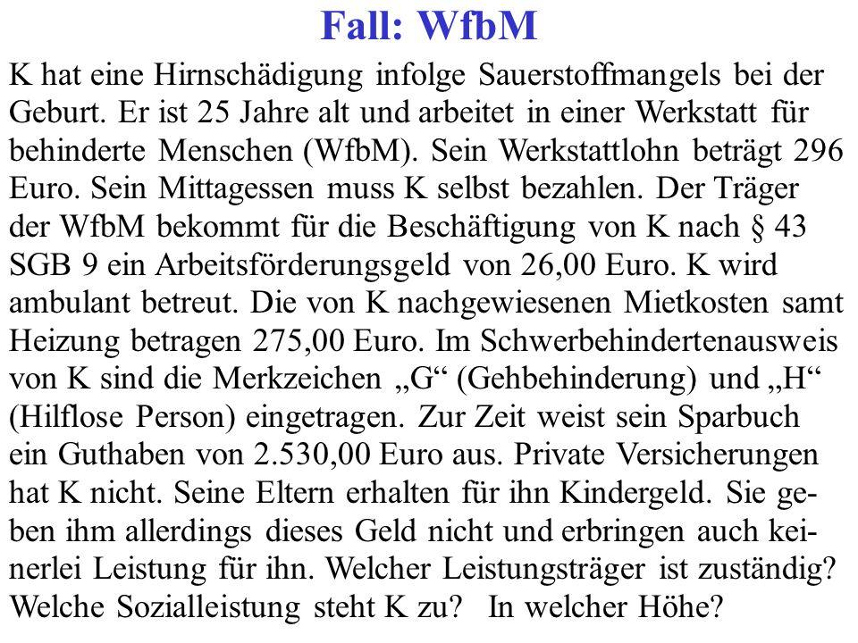 Fall: WfbM