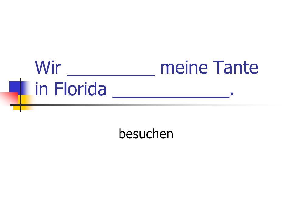 Wir _________ meine Tante in Florida ____________.