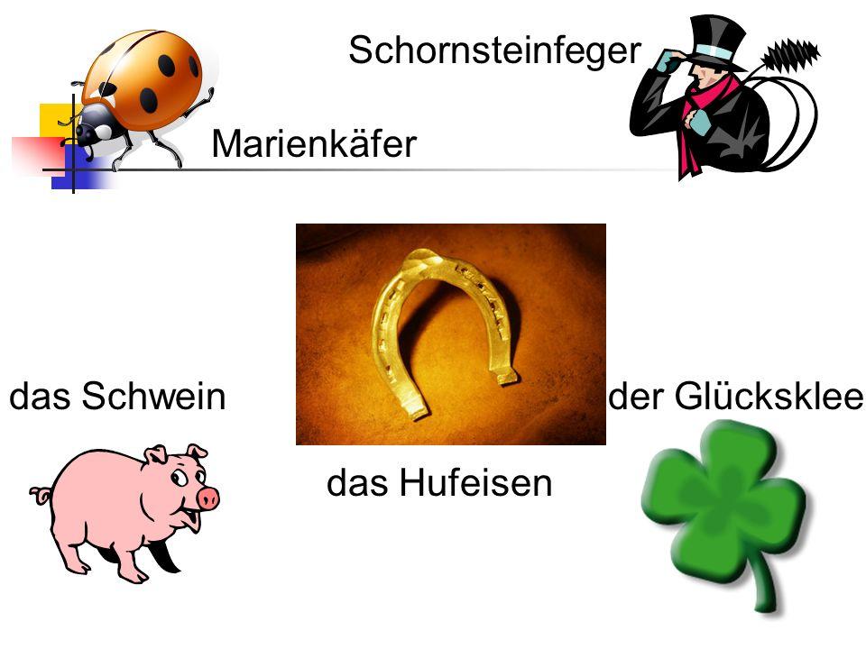 Schornsteinfeger Marienkäfer das Schwein der Glücksklee das Hufeisen