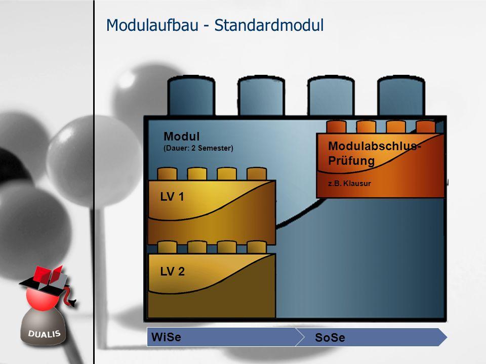 Modulaufbau - Standardmodul