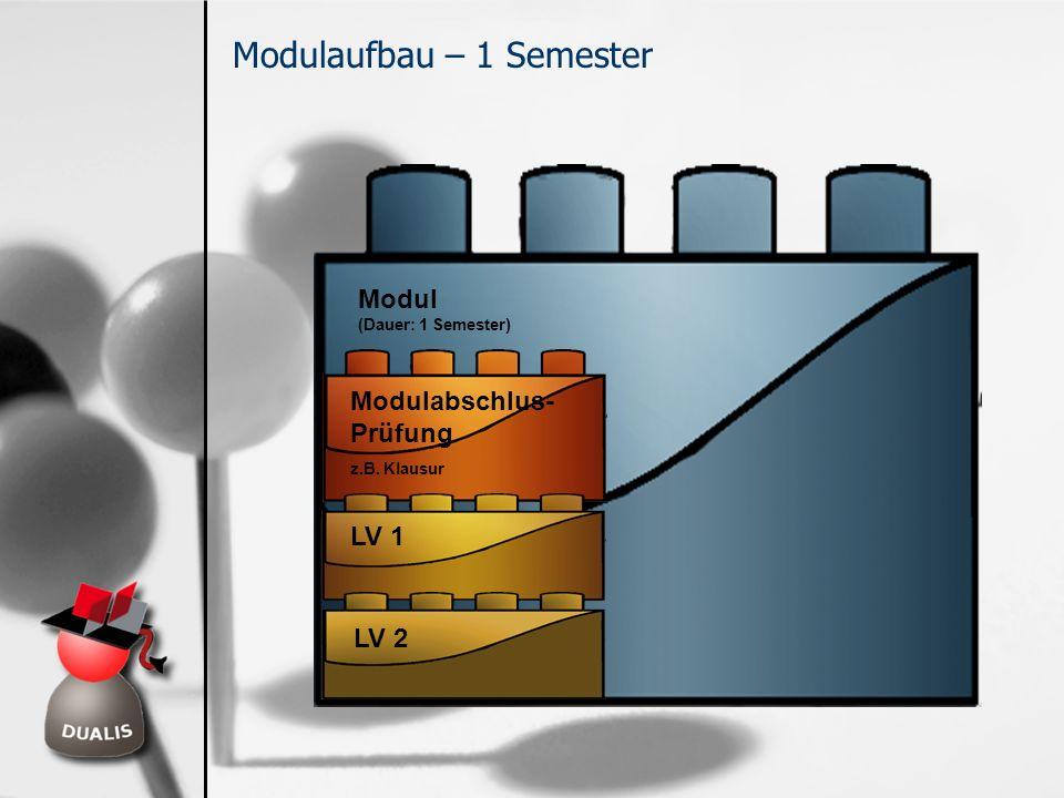Modulaufbau – 1 Semester