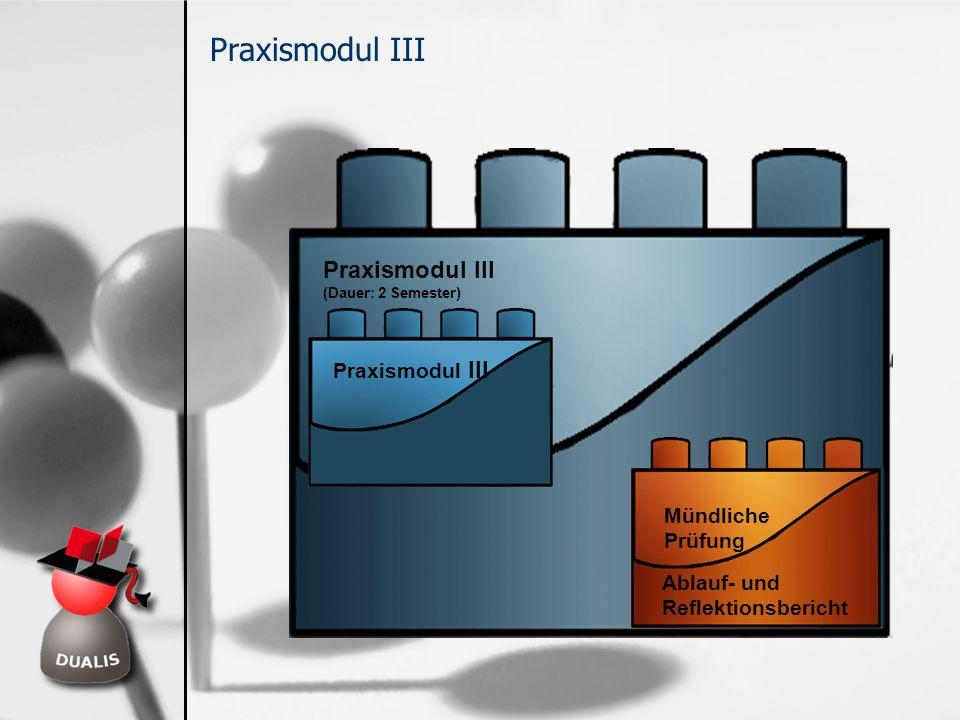 Praxismodul III Praxismodul III Praxismodul III Mündliche Prüfung