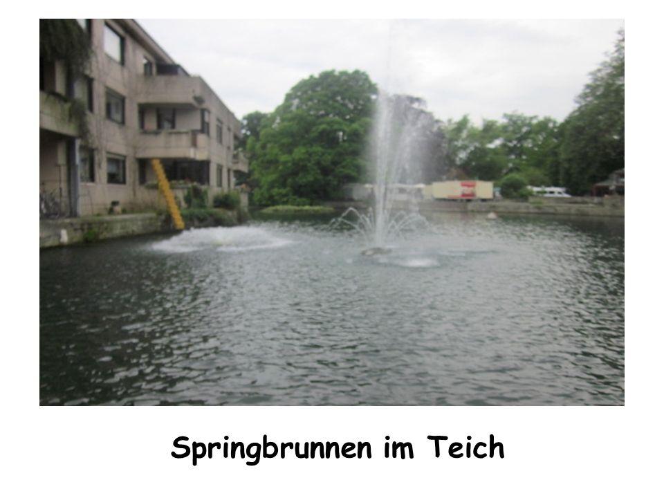 Springbrunnen im Teich