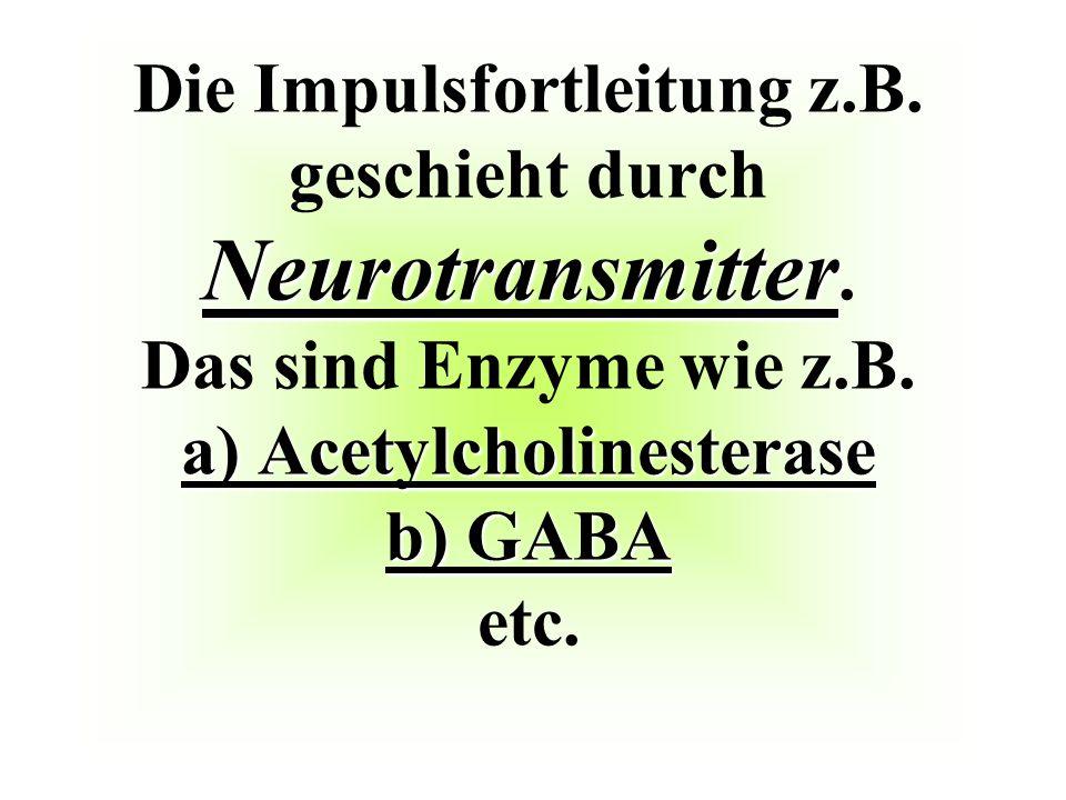 Die Impulsfortleitung z. B. geschieht durch Neurotransmitter