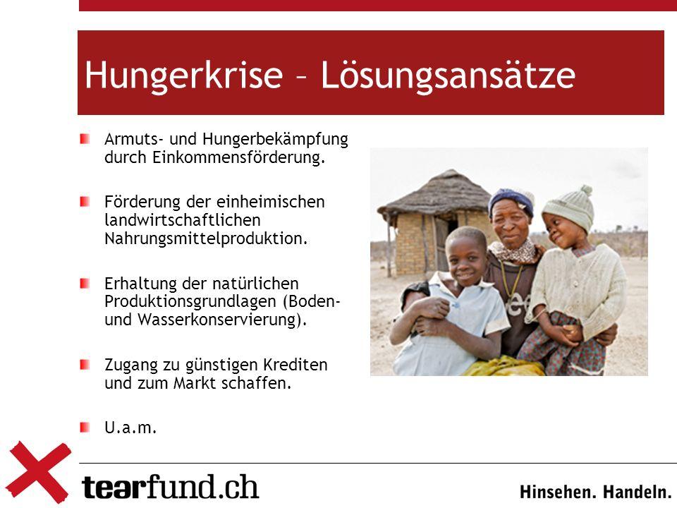Hungerkrise – Lösungsansätze