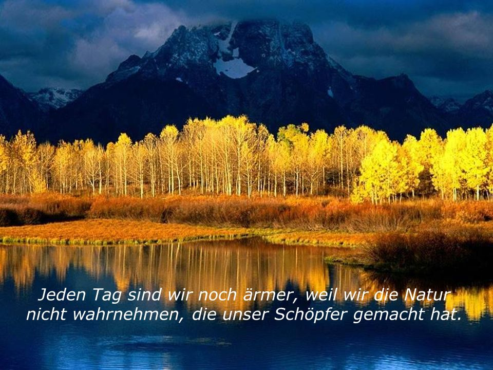 Jeden Tag sind wir noch ärmer, weil wir die Natur nicht wahrnehmen, die unser Schöpfer gemacht hat.