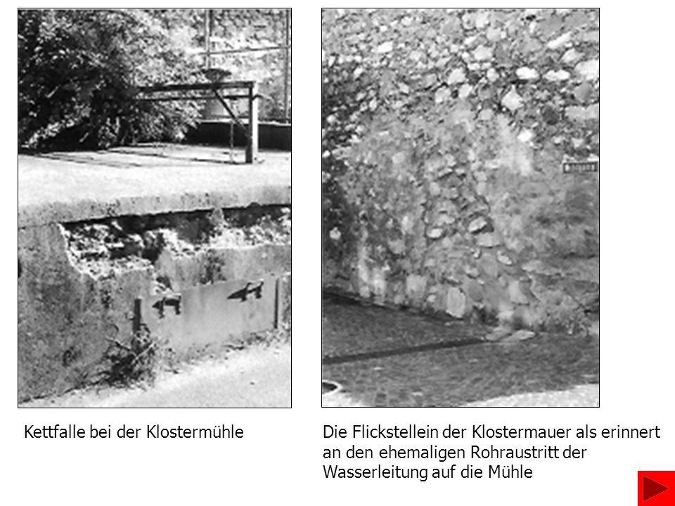 Kettfalle bei der Klostermühle