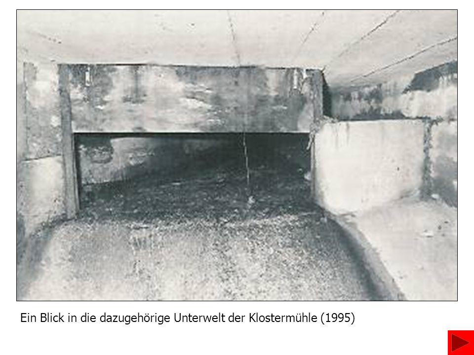 Ein Blick in die dazugehörige Unterwelt der Klostermühle (1995)