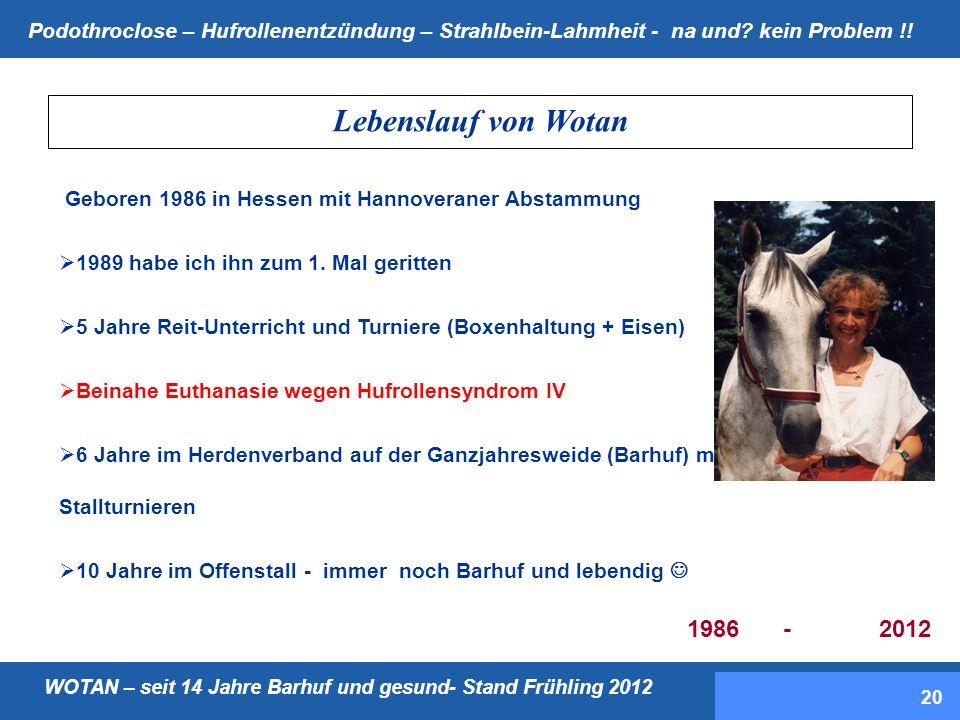 Lebenslauf von Wotan Geboren 1986 in Hessen mit Hannoveraner Abstammung. 1989 habe ich ihn zum 1. Mal geritten.