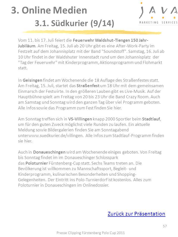 3. Online Medien 3.1. Südkurier (9/14)