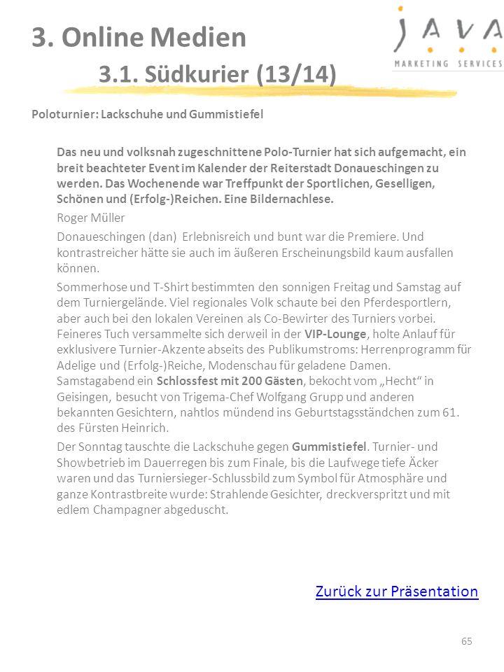 3. Online Medien 3.1. Südkurier (13/14)