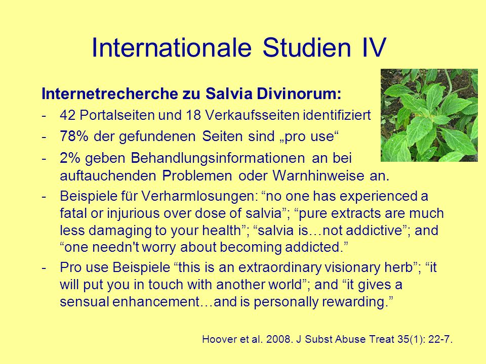 Internationale Studien IV