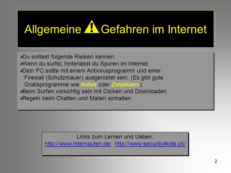 Allgemeine Gefahren im Internet