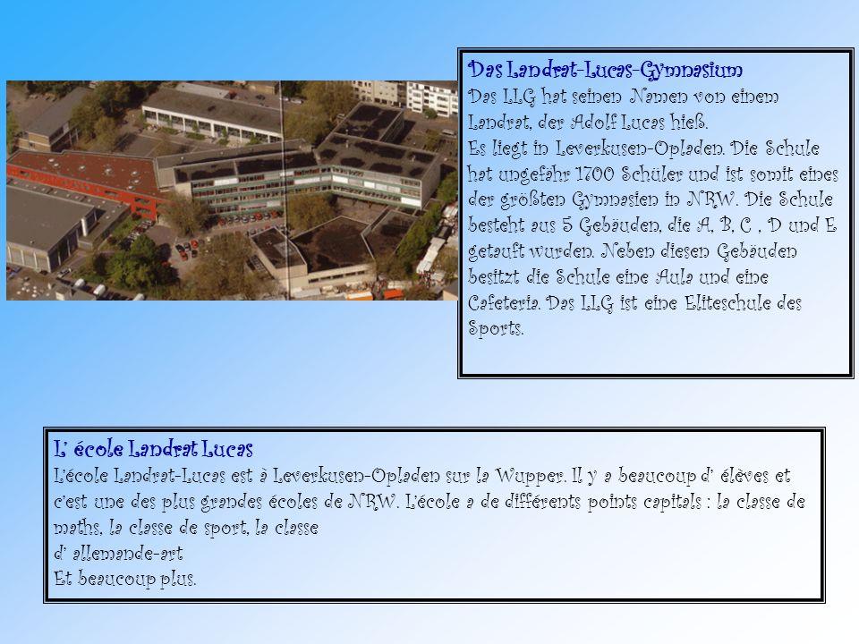 Das Landrat-Lucas-Gymnasium