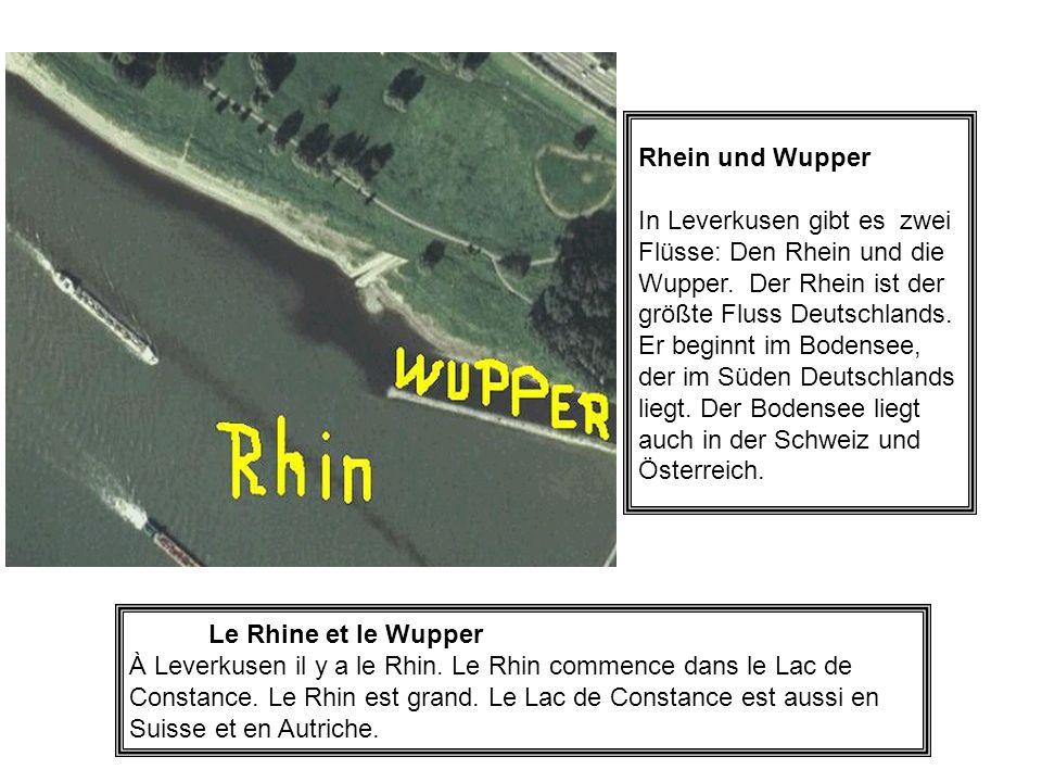 Rhein und Wupper
