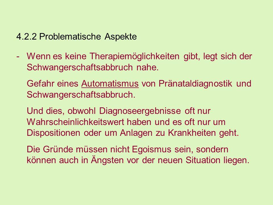 4.2.2 Problematische Aspekte