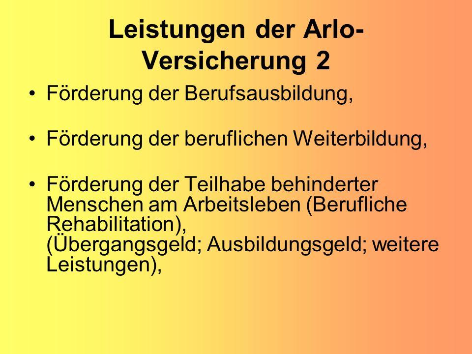 Leistungen der Arlo-Versicherung 2