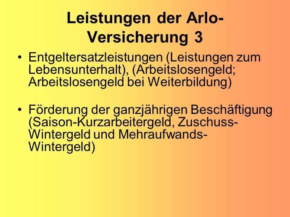 Leistungen der Arlo-Versicherung 3