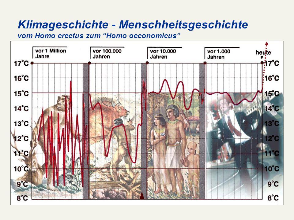Klimageschichte - Menschheitsgeschichte vom Homo erectus zum Homo oeconomicus