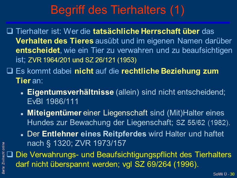 Begriff des Tierhalters (1)