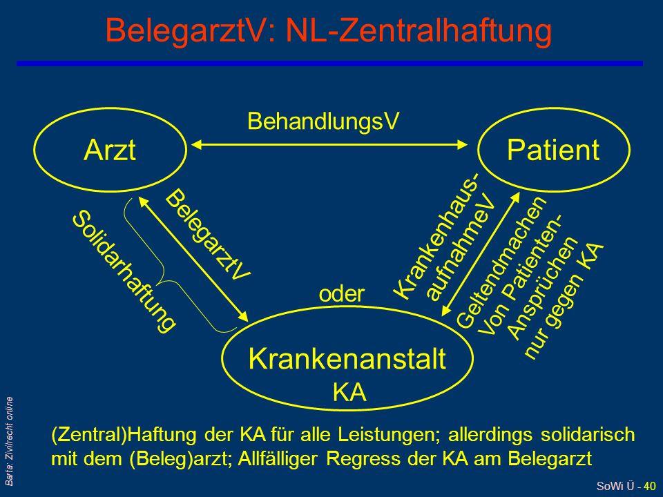 BelegarztV: NL-Zentralhaftung
