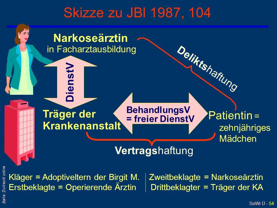 Skizze zu JBl 1987, 104 Narkoseärztin Deliktshaftung DienstV
