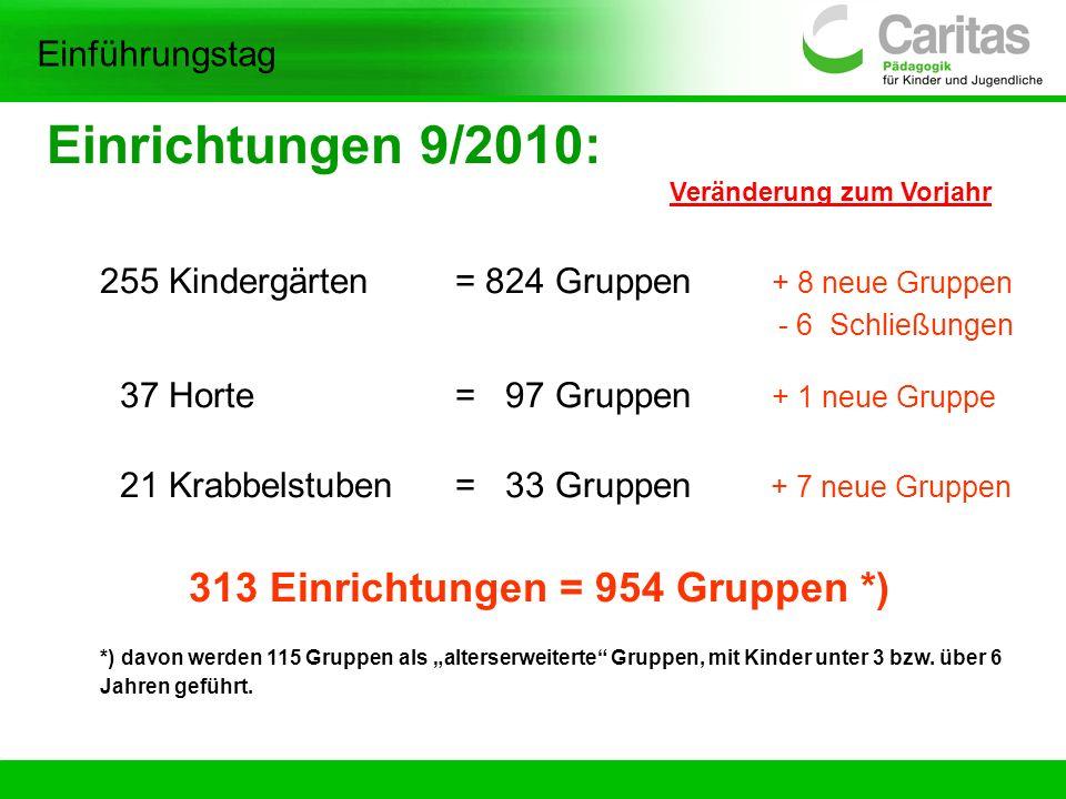 Einrichtungen 9/2010: 313 Einrichtungen = 954 Gruppen *)