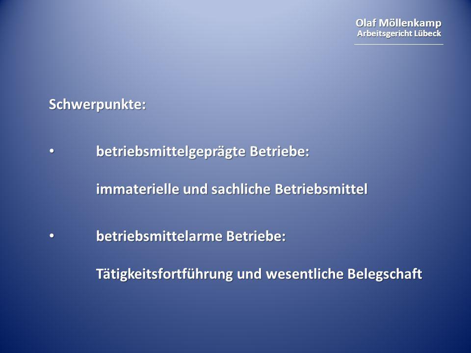Schwerpunkte: betriebsmittelgeprägte Betriebe: immaterielle und sachliche Betriebsmittel.